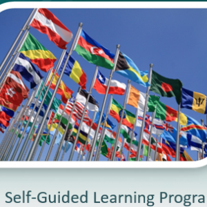 Cultural Competency e-Learning